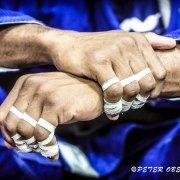 BJJ Worlds Training Camp 2016 © Peter Oberc Films